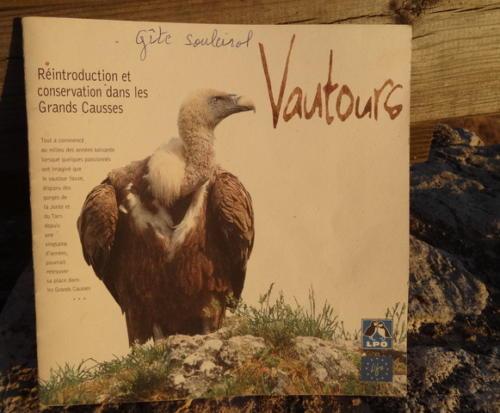 Sur la trace des vautours des causses ...